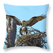 Ospreys Copulating In New Nest3 Throw Pillow