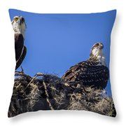 Ospreys In The Nest Throw Pillow