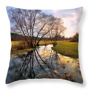 Ossow - Dluga River Throw Pillow by Tomasz Dziubinski