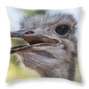 Ostrich Bokeh V2 Throw Pillow