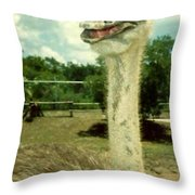 Ostrich Eyes And Feathers Throw Pillow