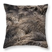 Ostrich Feathers  Throw Pillow
