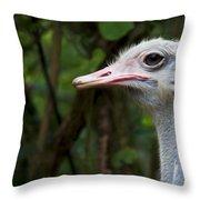 Ostrich Head Throw Pillow