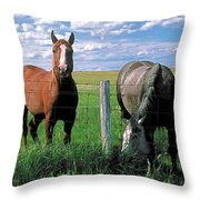 Other Side Of The Fence Throw Pillow