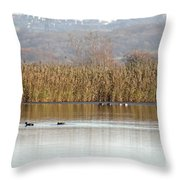 Otmoor Nature Reserve Throw Pillow