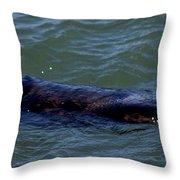 Otter 3 Throw Pillow