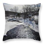Otter Brook Scene Throw Pillow