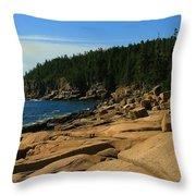 Otter Cliff Throw Pillow