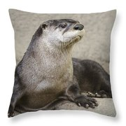 Otter North American  Throw Pillow