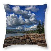 Otter Point Afternoon Throw Pillow