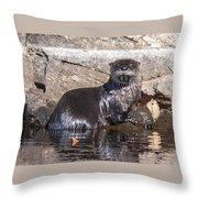 Otter Posing Throw Pillow
