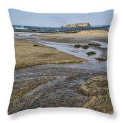 Otter Rock Throw Pillow