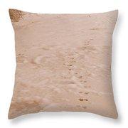 Otter Tracks In Fresh Snow Throw Pillow