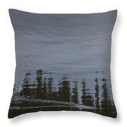 Otter X-ing Throw Pillow