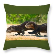 Otters Crossing The Road  Throw Pillow