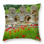 Our Entry Into Ephesus And Its Baths-turkey Throw Pillow