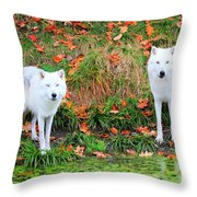 Our First Meeting Throw Pillow