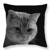 Our Lion In Black And White Throw Pillow