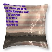 Our Love For Country Throw Pillow by James BO  Insogna
