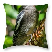 Our Poor Birch Throw Pillow