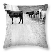 Our Way Or The Highway Bw Throw Pillow