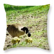 Out For A Bite Throw Pillow