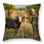 Out For A Graze Throw Pillow