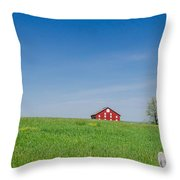 Out In The Big Wide Open Throw Pillow
