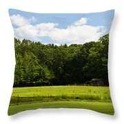 Out In The Country Throw Pillow