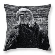 Out In The Field Throw Pillow
