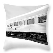 Out In The Open Bw Throw Pillow