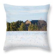 Out In The Snow Throw Pillow
