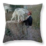 Out Of Africa  Friendly Wolves Throw Pillow
