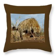 Out Of Africa Hyena 1 Throw Pillow