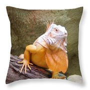 Out Of Africa Orange Lizard 1 Throw Pillow