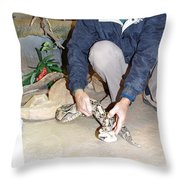 Out Of Africa Viper 1 Throw Pillow