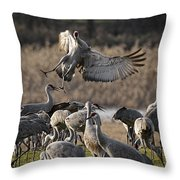 Out Of Control Throw Pillow