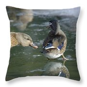 Out Of My Roosting Ice Spot Shorty Throw Pillow