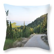 Out Of The Way Throw Pillow