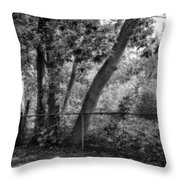 Out The Back Door Throw Pillow