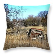 Out To Pasture 3 Throw Pillow