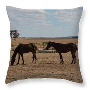 Outback Horses Throw Pillow