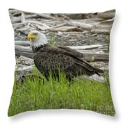 Outdoor Dining Throw Pillow