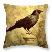 The Raven's Outlook Throw Pillow