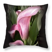 Outstanding In Its' Field Throw Pillow