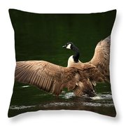 Outstretched Wings Throw Pillow