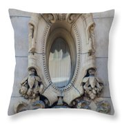 Oval Window Throw Pillow