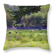 Over In The Meadow Throw Pillow