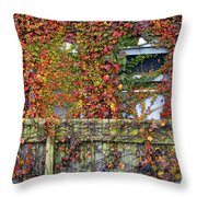 Over The Back Fence Throw Pillow by Paul W Faust -  Impressions of Light