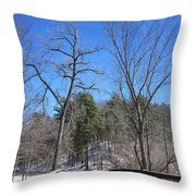 Over The Bridge Throw Pillow